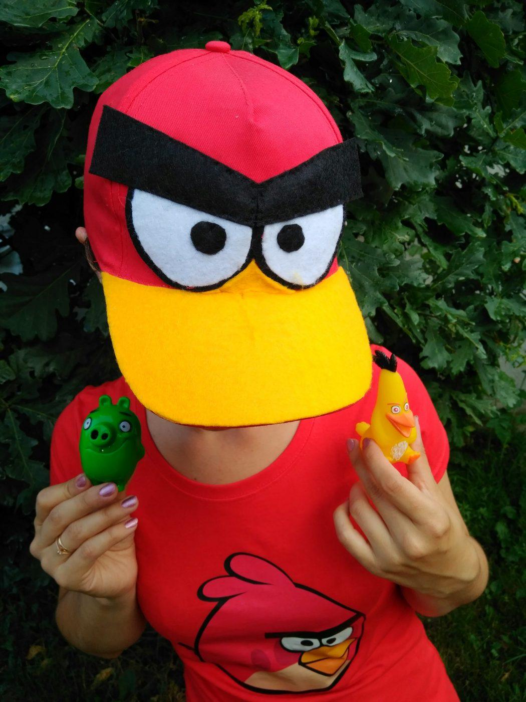 angry birds на праздник